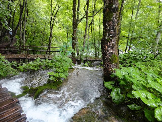 Kako priti do Plitviških jezer