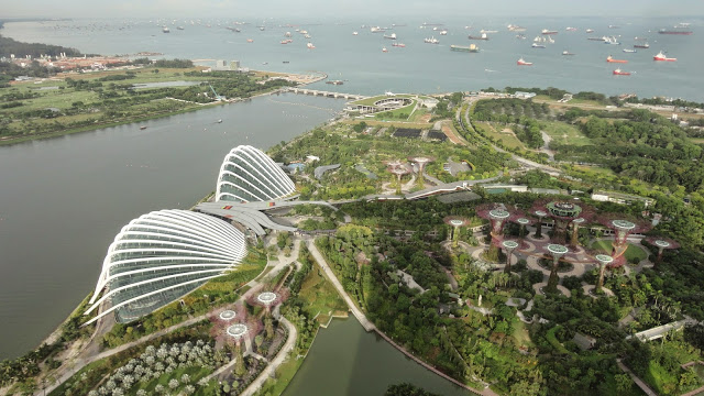 Parque Garden (Gardens by the Bay)