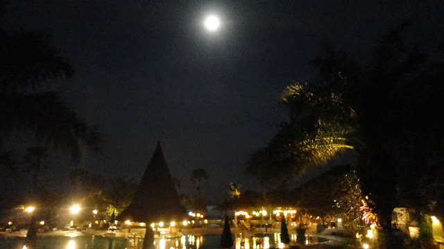 Things to Do in Bali and what are the major attractions in Bali
