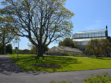 Dublin - major Parks