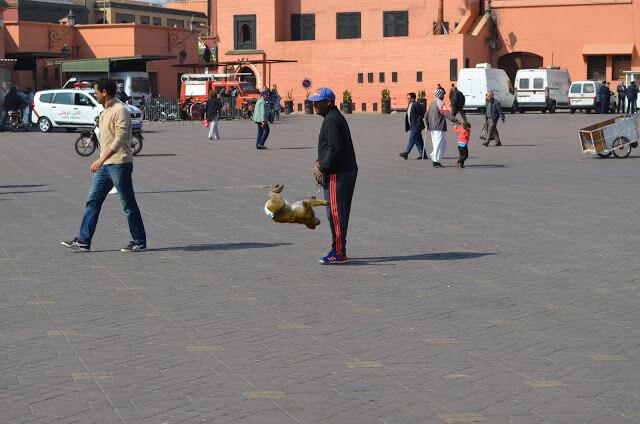 Marrocos a Praça Jemma El Fnaa