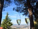 A Cidade das Vinícolas de Cavas, Sant Sadurni D´Anoia