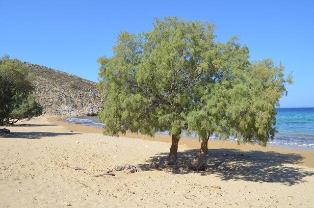 Praia de Psili Amos