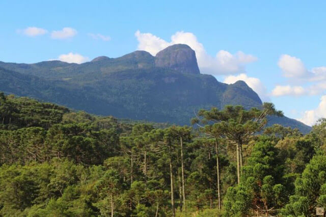 Vista de cima do Pico do Papagaio