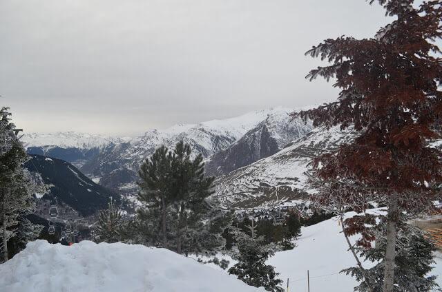 Arvores cobertadas de neve