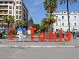 what to do in Tunis