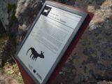 Bezas, o parque natural Pinares de Rodeno e as pintura rupestres