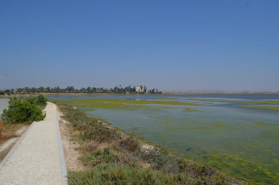 Lago Salgado de Lárnaca