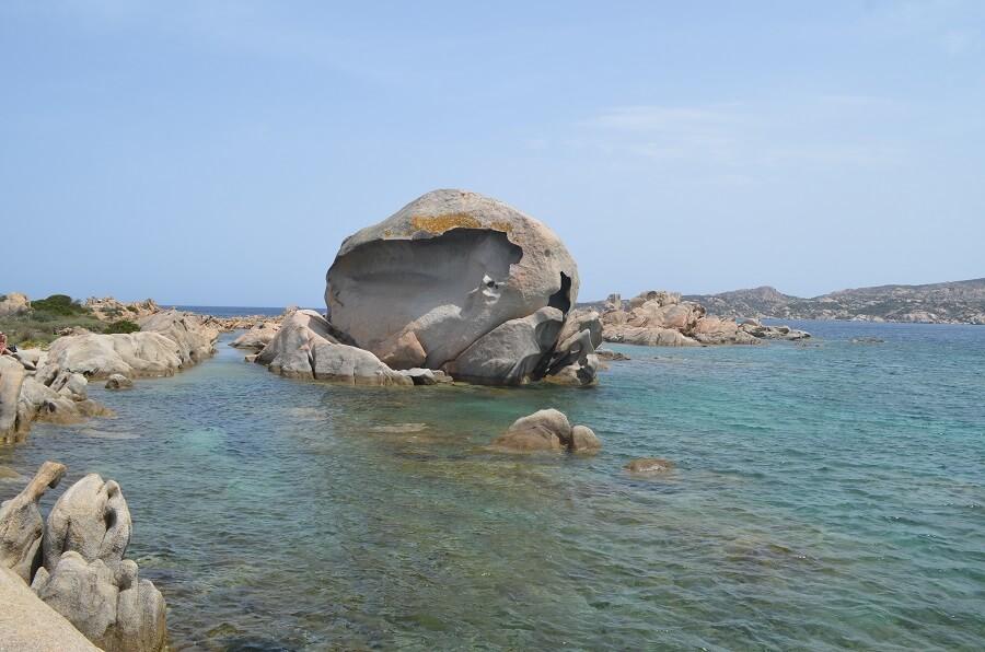 playa de cabeza de pulpo